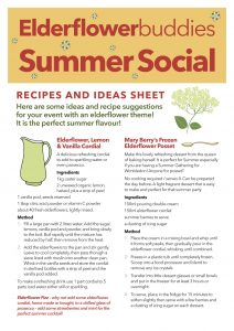 Summer Social Recipes & Ideas copy